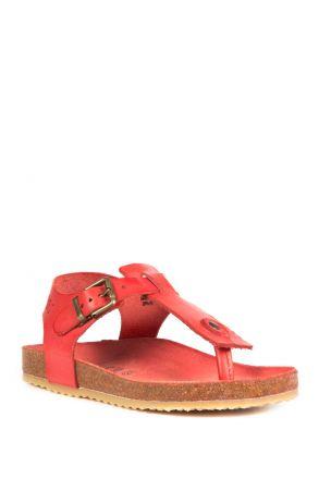 10977 Ch-Kifidis Çocuk Sandalet 31-35