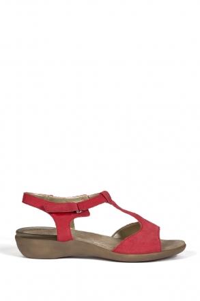 25700 Scholl Carswell Kadın Sandalet 35-41