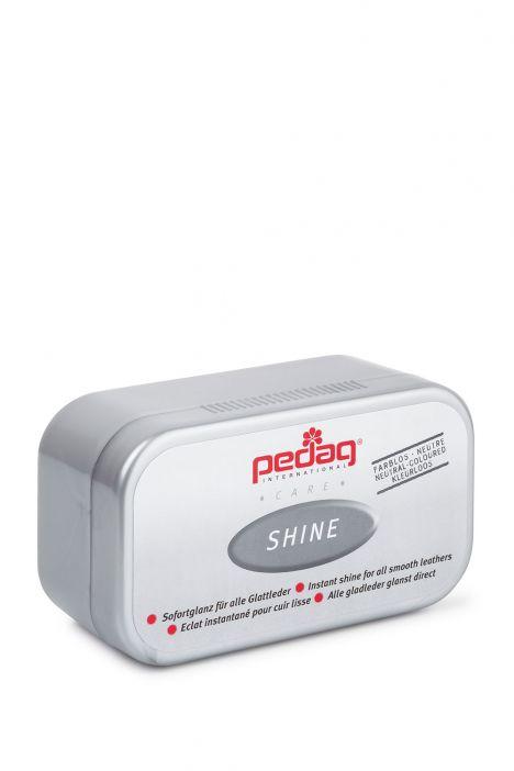 640 Pedag Shine Büyük Parlatma Süngeri STD